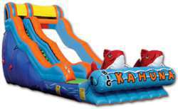 The Big Kahuna Slide (Dry)